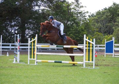 nowra-show-2020-horse-jump