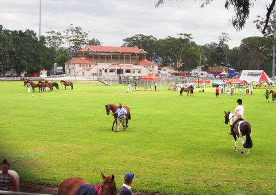 nowra-show-2020-horse-show