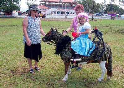 nowra-show-2020-miniature-horses