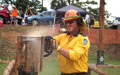 RFS Precision Tree Felling and Chainsaw Events