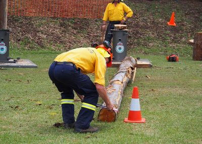 rfs-tree-felling-2