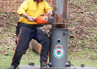 rfs-tree-felling